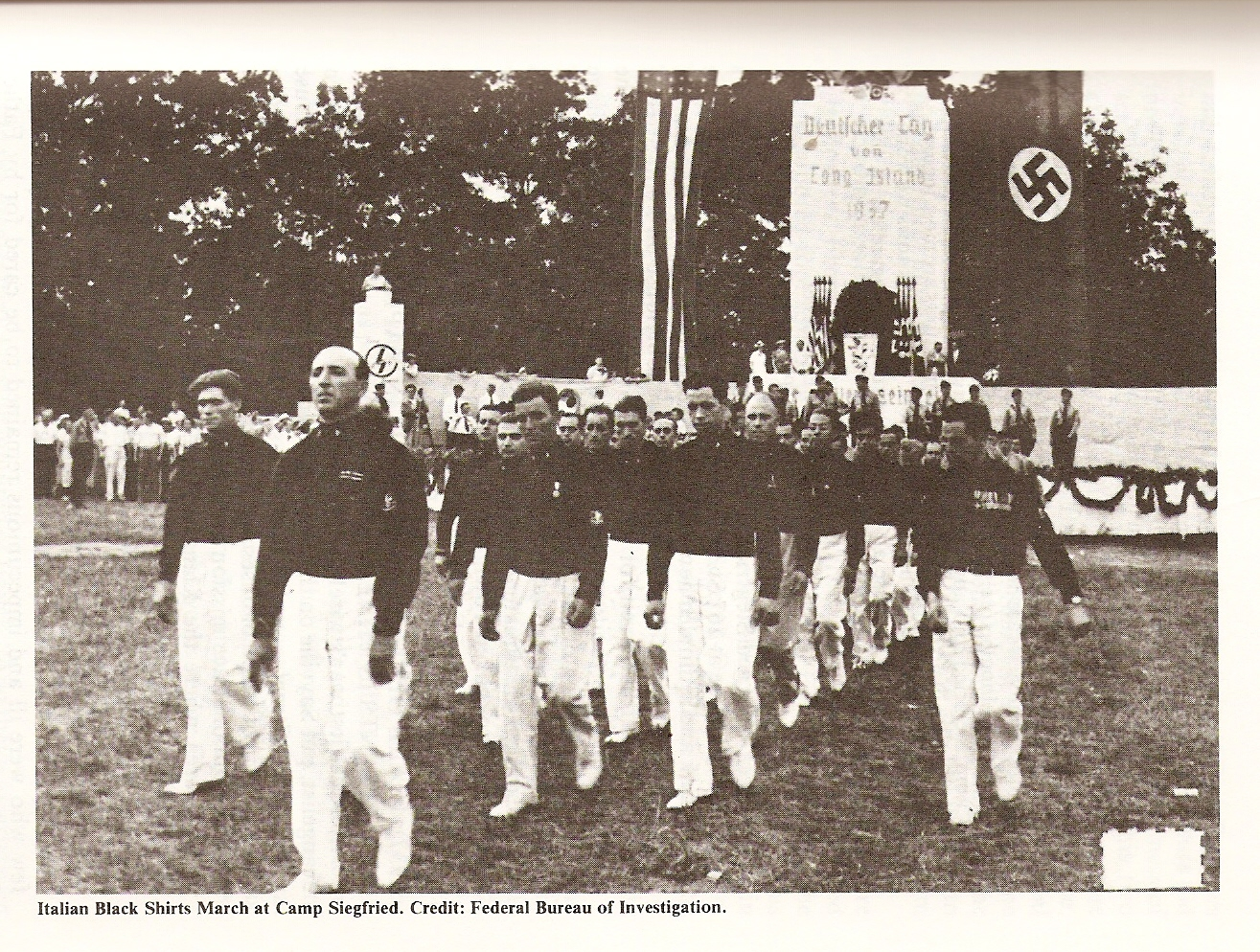 Long Island Nazis: A Local Synthesis of Transnational Politics