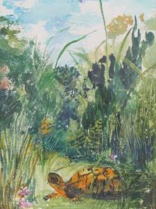 Figure 6: Mastic box turtle, watercolor, Theodora DuBois Paul, 1975.
