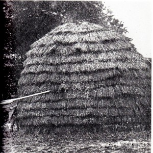 "Traditional Shinnecock wigwam or ""witu"", ca. 1890. Photographer Unknown, Martine Collection"
