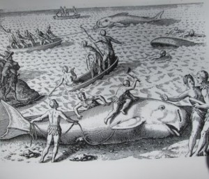 2. Theodore de Bry Americae (1601-02) Engraving depicting European explorers, possibly in Newfoundland, witnessing Native American whaling practices. Kraus Collection, Library of Congress classification G 159 E141.